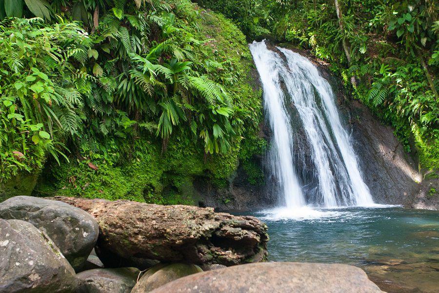cascade ecrevisses - Activités en Basse Terre